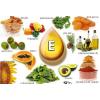 A sejtvédő E-vitamin