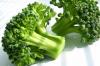 Újabb bizonyíték a brokkoli rákellenes hatásáról