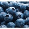 10 természetes vitaminpótló növény!